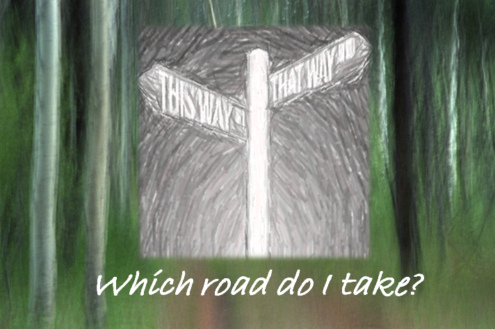 Which Road To Take1 Who Can You Trust When Taking Credit and Financial Advice?
