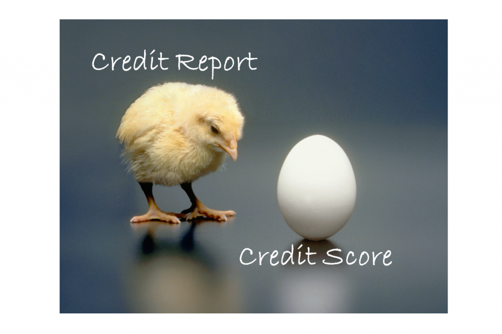 Chicken before the egg TAC Picture1 1024x681 The Credit Score Myth and Why it's Wrong!