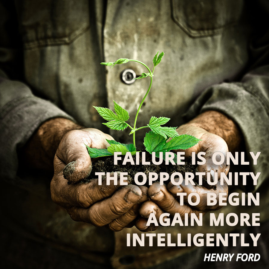 failure grows plant The Financial Pivot: How to bounce back from financial adversity and thrive after setback